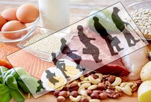 نیاز ب پروتئین در سنین مخلف